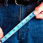 Средний размер пениса